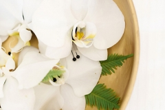 orchid-boutonnieres